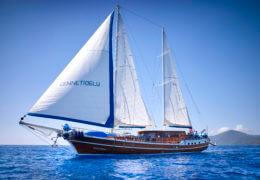 Godiva Sailing zeilen gehesen